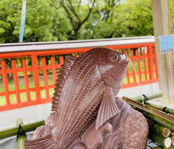 十日恵比寿神社・商売繁盛|福岡天神の風水開運カウンセリング